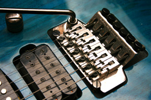 floyd rose, whammy bar